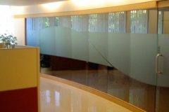 Fasara-Decorative-Window-Film-Dusted