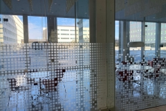 Fasara Decorative Window Film Lines-3