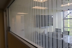Fasara Decorative Window Film Lines